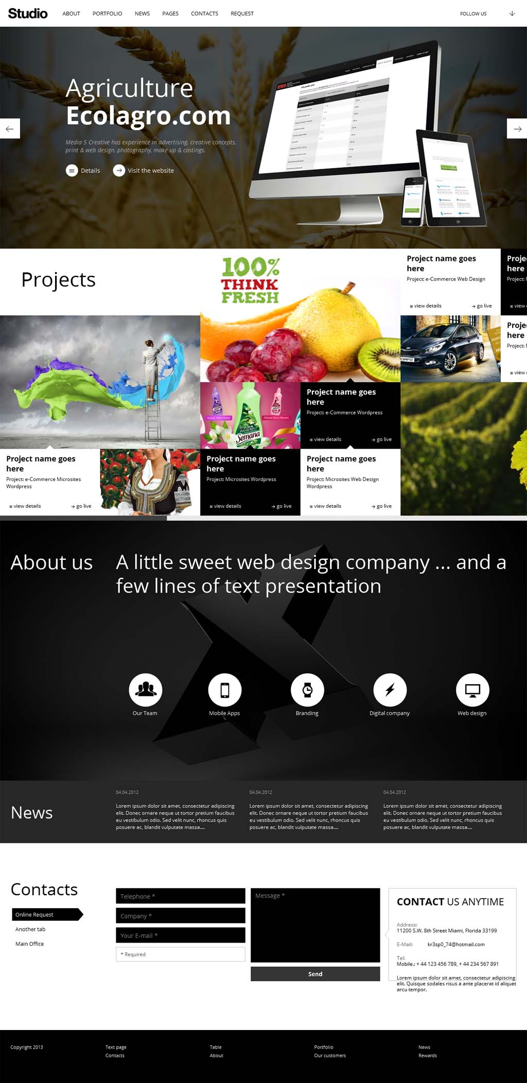 Studio Responsive Business Theme