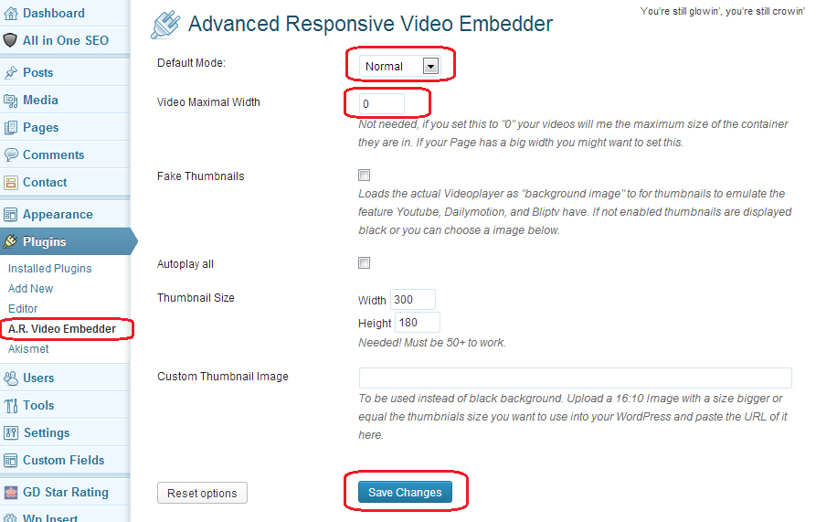 Advanced Responsive Video Embedder Settings