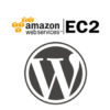 Amazon EC2 t2.micro WordPress Site Plugin & WordPress Update Problem [Solved]