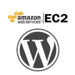 Amazon EC2 t2.micro WordPress Site Plugin & WordPress Update Problem [Solved]